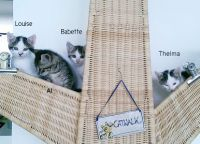 Louise,Babette,Al,Thelma